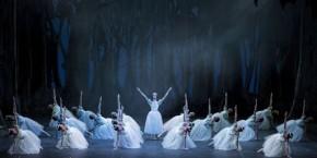 Teatro Regio Torino, 13 XII 2014 (Giselle, ballet Nacional de Cuba) 3