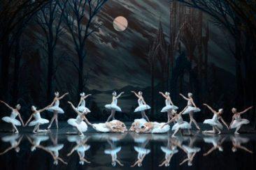 """""""Il lago dei cigni"""" del Saint-Petersburg Classical Ballet a Madrid"""